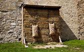 中世のターゲット — ストック写真