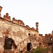 Medziboz castle ruins 2 — Stock Photo #9723935