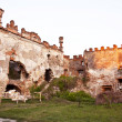 Medziboz castle ruins 3 — Stock Photo #9723946