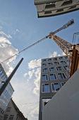 Crane and skycrapers — Stock Photo