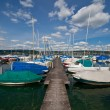 Lake with boats - Stock Photo