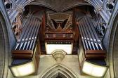Canne d'organo — Foto Stock