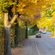 Autumn road — Stock Photo #8959775