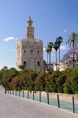 Torre de Oro - Sevilla, Spain. — Stock Photo