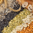 Dried cereal seeds and fruits — Stock Photo