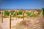 Wooden stakes with rope on the beach — Stock Photo