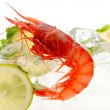 Fresh shrimps with lemon and ice — Stock Photo