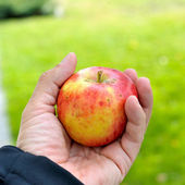 Male holding the apple — Stock Photo