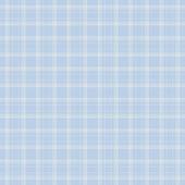 Dainty Baby Blue Plaid — Stock Photo