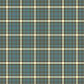 Seamless Aqua, Brown, & Cream Plaid — Zdjęcie stockowe