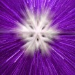 Abstract purple snowflake background — Stock Photo