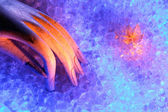 Abstract romatic colorful image — Stockfoto