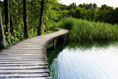 Plitvice lakes in Croatia — Stock Photo