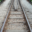 Railway track pointed — Stock Photo #9128251