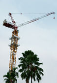 Contruction Crane — Stock Photo