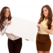Gemini sisters hold a poster on a white background — Stock Photo #9423218