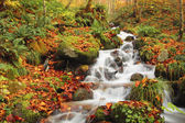 Autumn Colors of Oirase River — Stock Photo