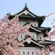Cherry blossoms and Japanese castle - Stock Photo