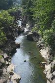 Valley genbi in Iwate,Touhoku — Stock Photo
