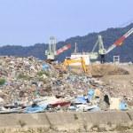 Постер, плакат: Disaster Recovery the Great East Japan Earthquake