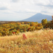 Mt.Iwate and colorful  leaves in Hachimantai — Stock Photo