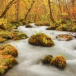 Autumn Colors of Oirase River — Foto Stock