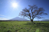 Barevné listí a mt.iwate — Stock fotografie