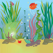 Sealife — Stock Vector