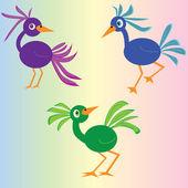 Grappige vogels — Stockvector