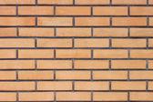 Textura de la pared de ladrillo — Foto de Stock