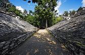 Mayan site of Coba — Stock Photo