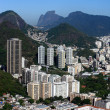 Royalty-Free Stock Photo: Botafogo