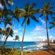 Barra beach salvador of bahia — Stock Photo #9709032
