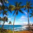 Barra beach salvador of bahia - Stock Photo