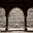 The giant step well of abhaneri - Stock Photo