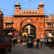 Stock Photo: Gate in Bikaner