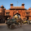 Gate in Bikaner — Stock Photo