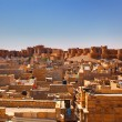 Jaisalmer City Fort — Stock Photo #9709545