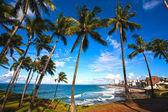 Playa barra salvador de bahia — Foto de Stock