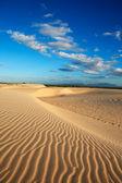 Sand dune of cumbuco — Stock Photo