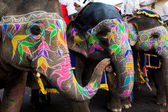 Gangaur 祭ジャイプール — ストック写真
