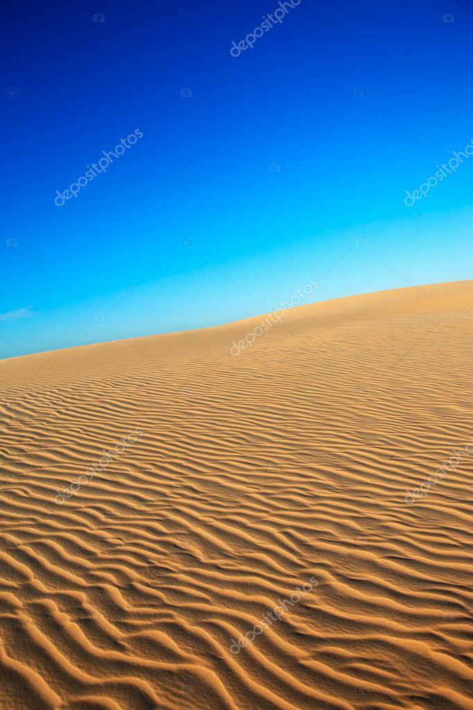 生日��.d9f�x�_西阿拉州沙丘的ۙ