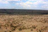 Masai mara — Stock Photo