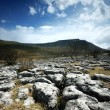 Limestone Pavement — Stock Photo
