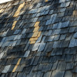Stock Photo: Shingles