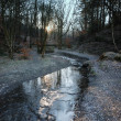 A Winter Stream - England — Stock Photo