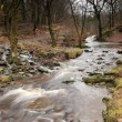 Fast Flowing Spring Stream - England — Stock Photo