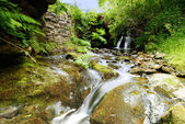 A Summer Stream - England — Stock Photo
