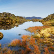 Tarn on Haystacks — Stock Photo