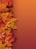 Orange Fall Background Border with Copyspace — 图库照片